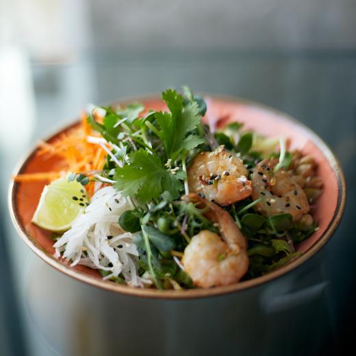 Bowl Carry Shrimps